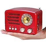 PRUNUS J-160 Radio de Transistor Vintage pequeña, Altavoz Bluetooth portatil Radio Retro con batería Recargable de 1800mAh, USB Incorporado, Micro-SD, Entrada AUX (Rojo Mini)